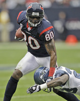 Andre Johnson picture G327125