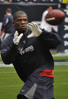 Andre Johnson picture G312653