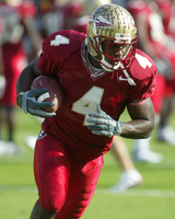Anquan Boldin picture G327392