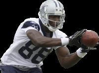 Dez Bryant picture G327503