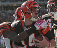 Andy Dalton picture G327594