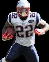 Stevan Ridley picture G327671