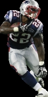 Stevan Ridley picture G327667