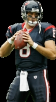 Matt Schaub picture G327887