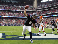 Matt Schaub picture G327891