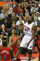 Jason Maxiell picture G328101