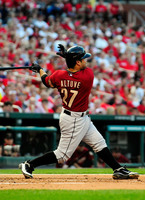 Jose Altuve picture G328638