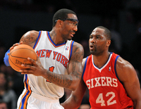 Amare Stoudemire picture G328663