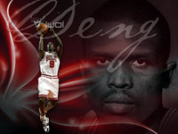 Luol Deng picture G328896
