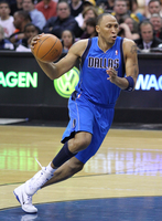 Shawn Marion picture G328993