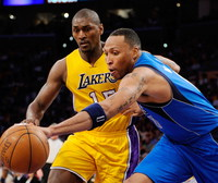 Shawn Marion picture G328995