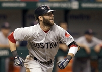 Dustin Pedroia picture G329054