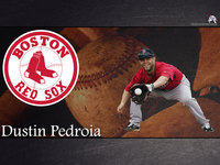 Dustin Pedroia picture G329062