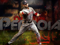 Dustin Pedroia picture G329065