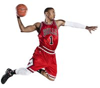 Derrick Rose picture G329076