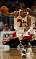 Derrick Rose picture G329085