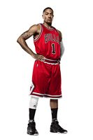 Derrick Rose picture G313107