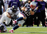 Danny Woodhead picture G329968