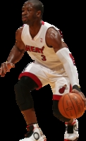 Dwyane Wade picture G330580