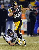 Hines Ward picture G330804