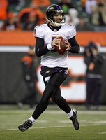 Joe Flacco picture G330851