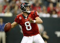 Matt Schaub picture G313914