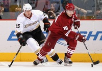 Shane Doan picture G331278