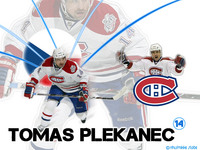 Tomas Plekanec picture G331807