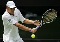 Andy Roddick picture G332037