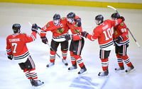 Chicago Blackhawks picture G332640