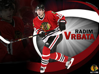 Chicago Blackhawks picture G332642