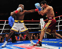 Timothy Bradley picture G333594