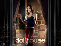 Dollhouse picture G333701