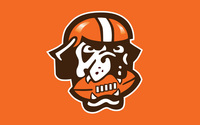 Cleveland Browns picture G334787