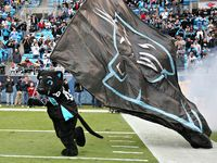 Carolina Panthers picture G334791