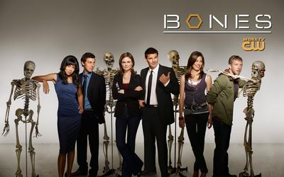 Bones poster G334996