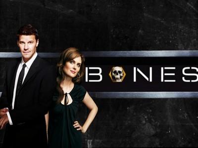 Bones poster G334999
