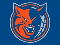 Charlotte Bobcats picture G335112