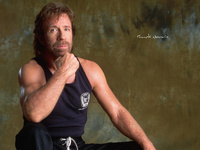 Chuck Norris picture G335129
