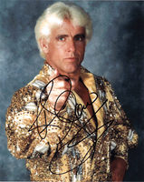 Ric Flair picture G336969