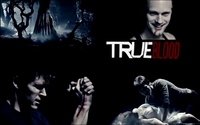 True Blood picture G337678