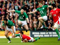 Ireland Rugby picture G338000
