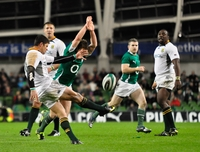 Ireland Rugby picture G338003