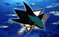 San Jose Sharks picture G338066