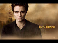 Twilight Saga picture G338160