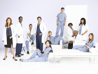 Greys Anatomy picture G339089