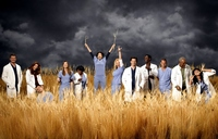 Greys Anatomy picture G339091