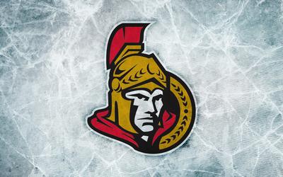 Ottawa Senators poster G339586