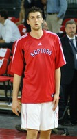 Andrea Bargnani picture G340535