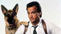 James Belushi picture G341020